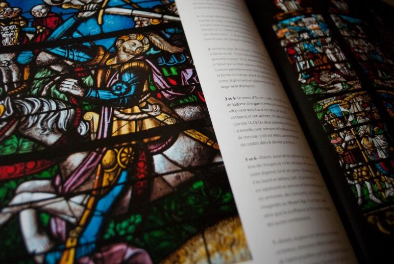 """""""Les vitraux de la cathédrale de Sens"""" par Bernard Brousse, Claire Pernuit et FrançoisePerrot"""